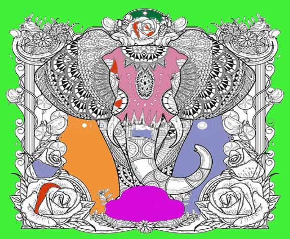 libro colorear adultos